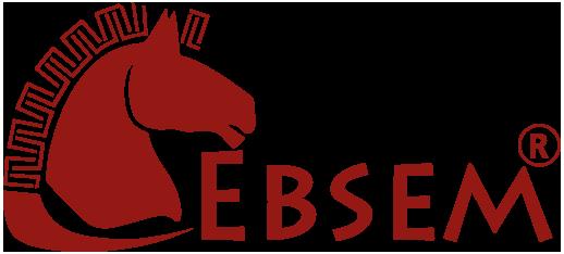 Ebsem